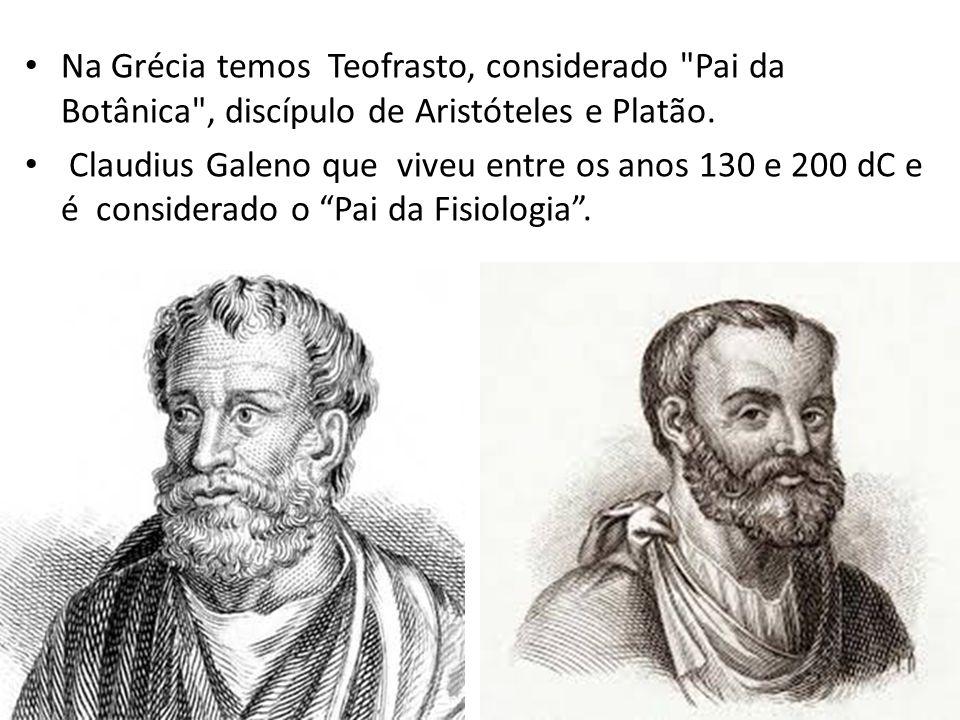 Na Grécia temos Teofrasto, considerado Pai da Botânica , discípulo de Aristóteles e Platão.