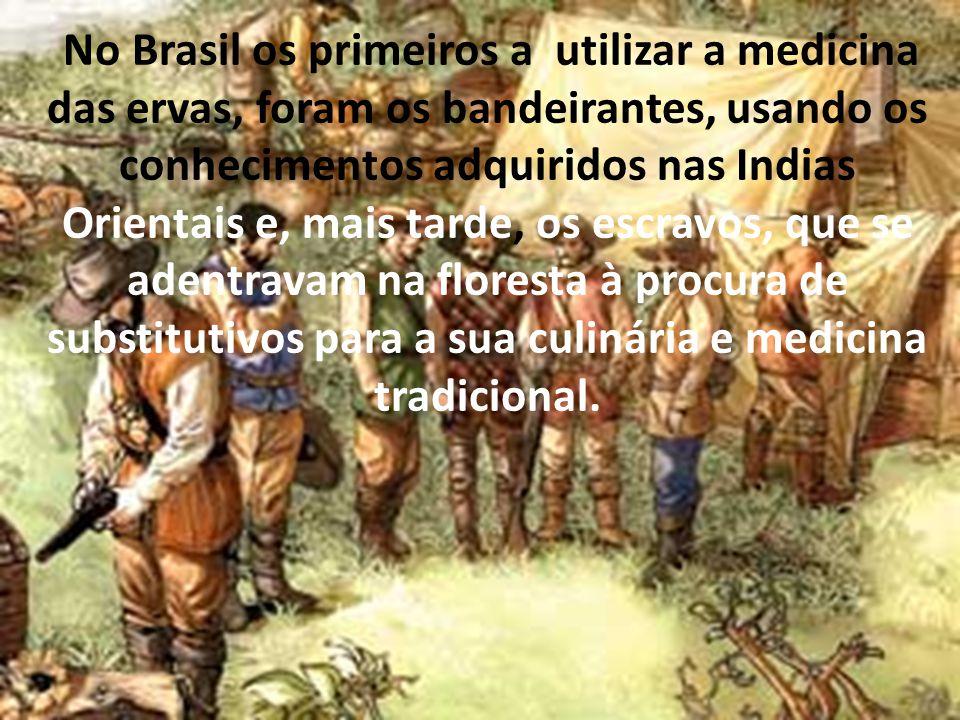 No Brasil os primeiros a utilizar a medicina das ervas, foram os bandeirantes, usando os conhecimentos adquiridos nas Indias Orientais e, mais tarde, os escravos, que se adentravam na floresta à procura de substitutivos para a sua culinária e medicina tradicional.