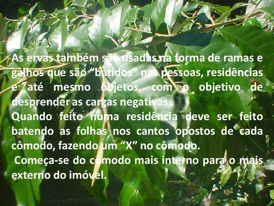 As ervas também são usadas na forma de ramas e galhos que são batidos nas pessoas, residências e até mesmo objetos, com o objetivo de desprender as cargas negativas .