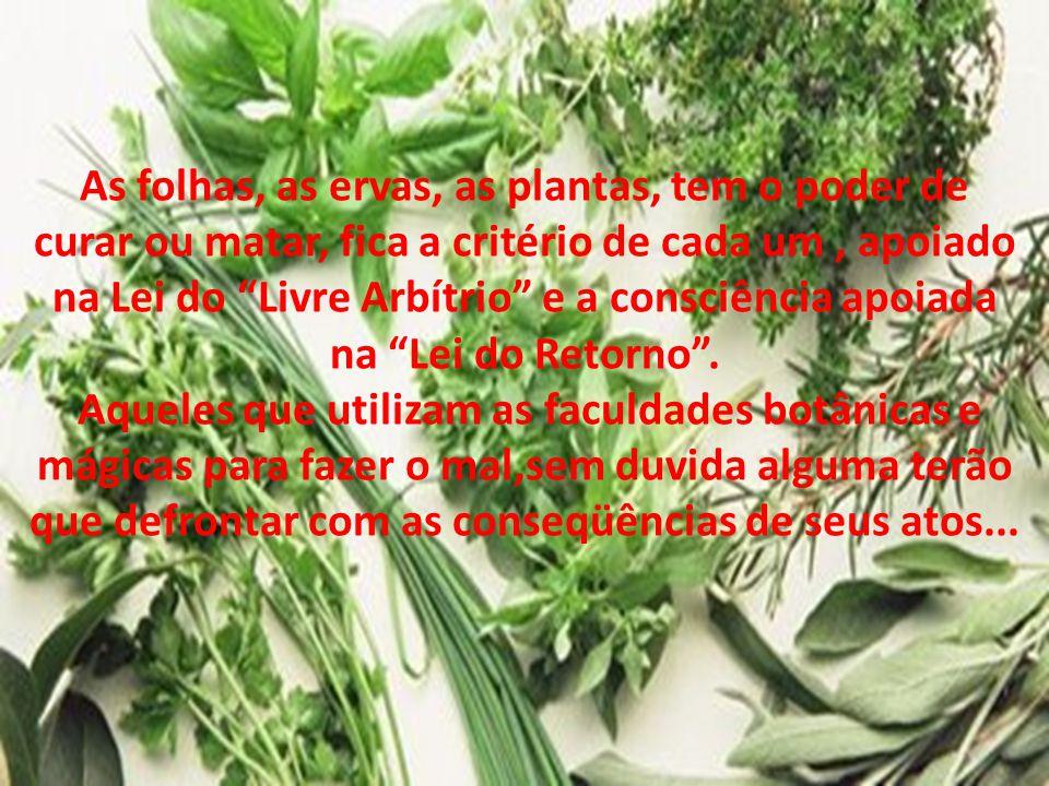 As folhas, as ervas, as plantas, tem o poder de curar ou matar, fica a critério de cada um , apoiado na Lei do Livre Arbítrio e a consciência apoiada na Lei do Retorno .