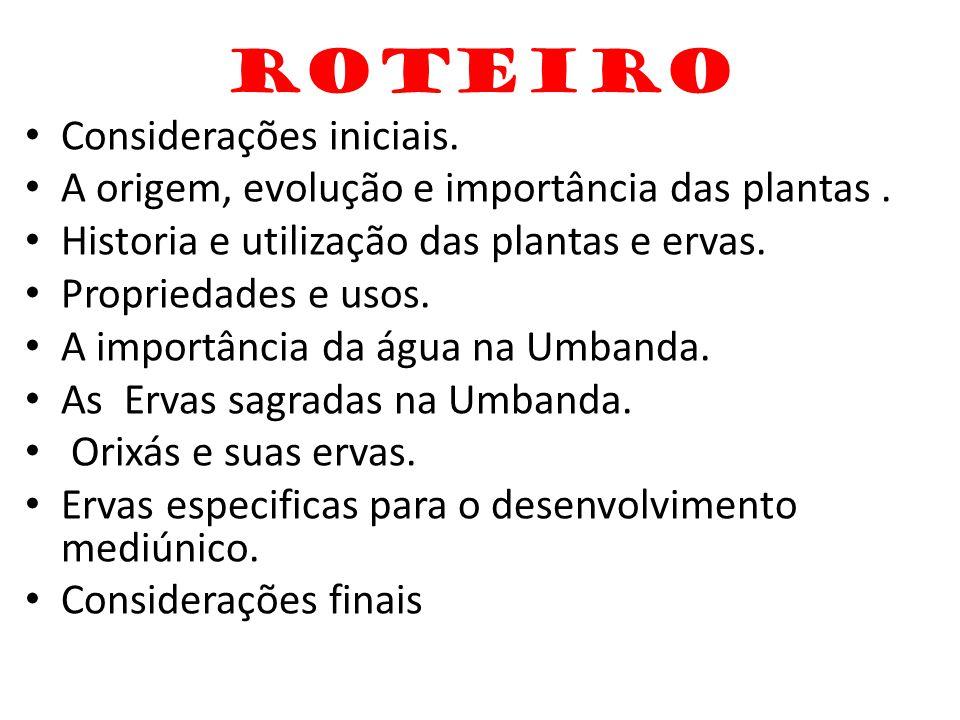 ROTEIRO Considerações iniciais.