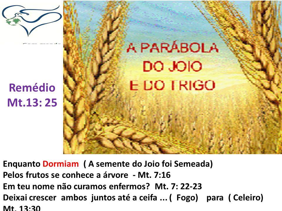 Remédio Mt.13: 25 Enquanto Dormiam ( A semente do Joio foi Semeada)