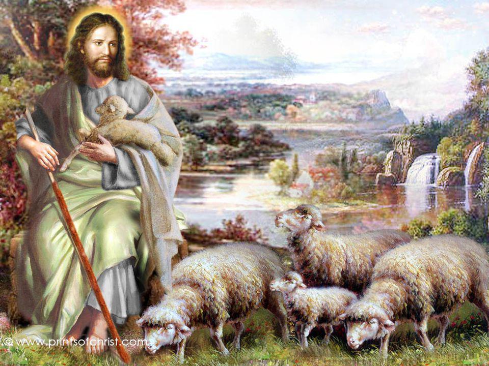 + As ovelhas devem escutar a voz do Pastor e segui-lo…