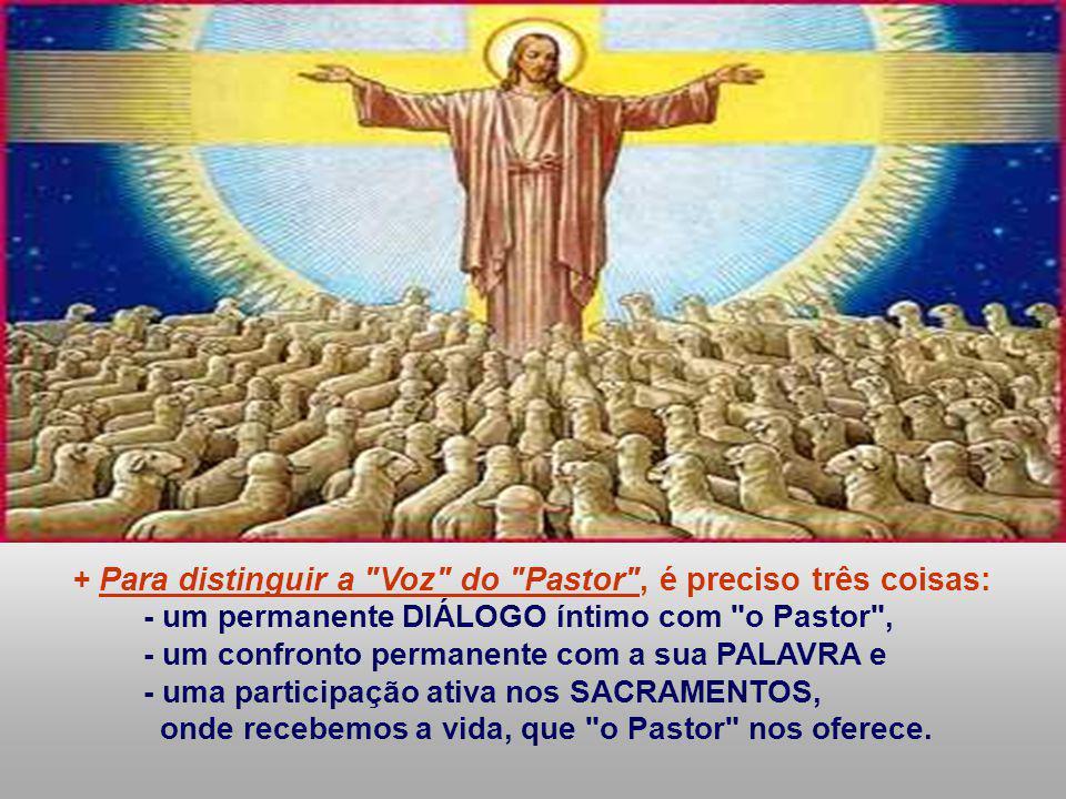 - um permanente DIÁLOGO íntimo com o Pastor ,