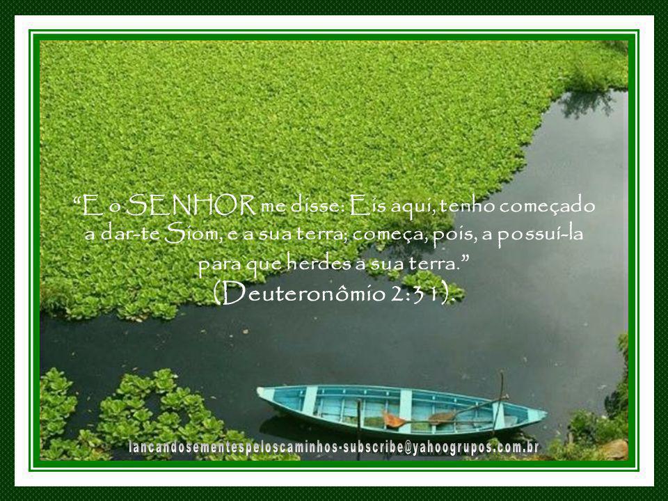 E o SENHOR me disse: Eis aqui, tenho começado a dar-te Siom, e a sua terra; começa, pois, a possuí-la para que herdes a sua terra. (Deuteronômio 2:31).