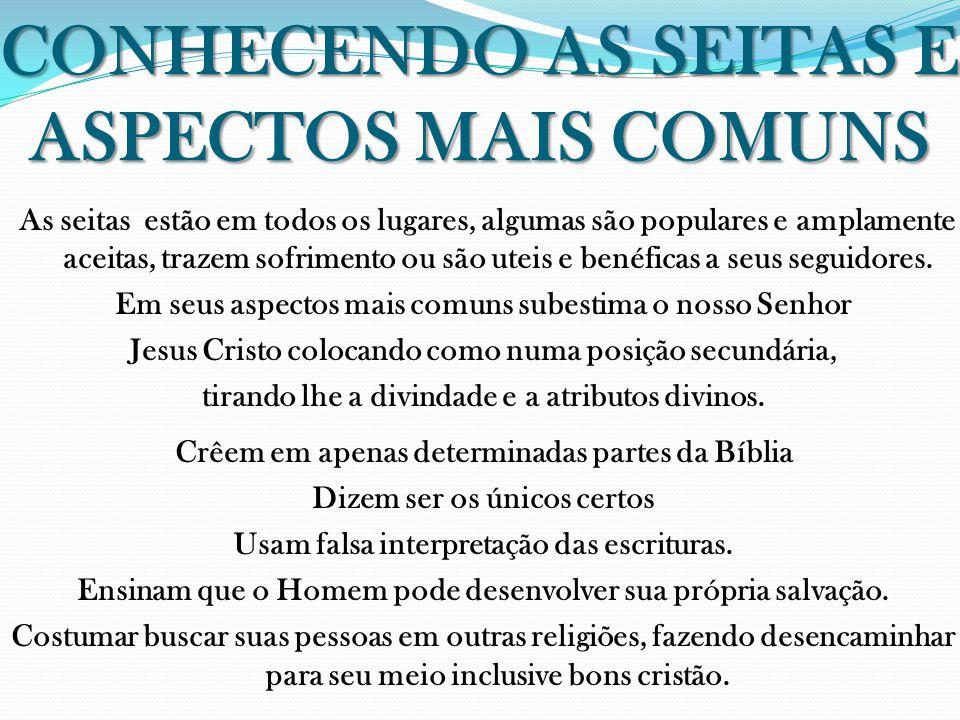 CONHECENDO AS SEITAS E ASPECTOS MAIS COMUNS