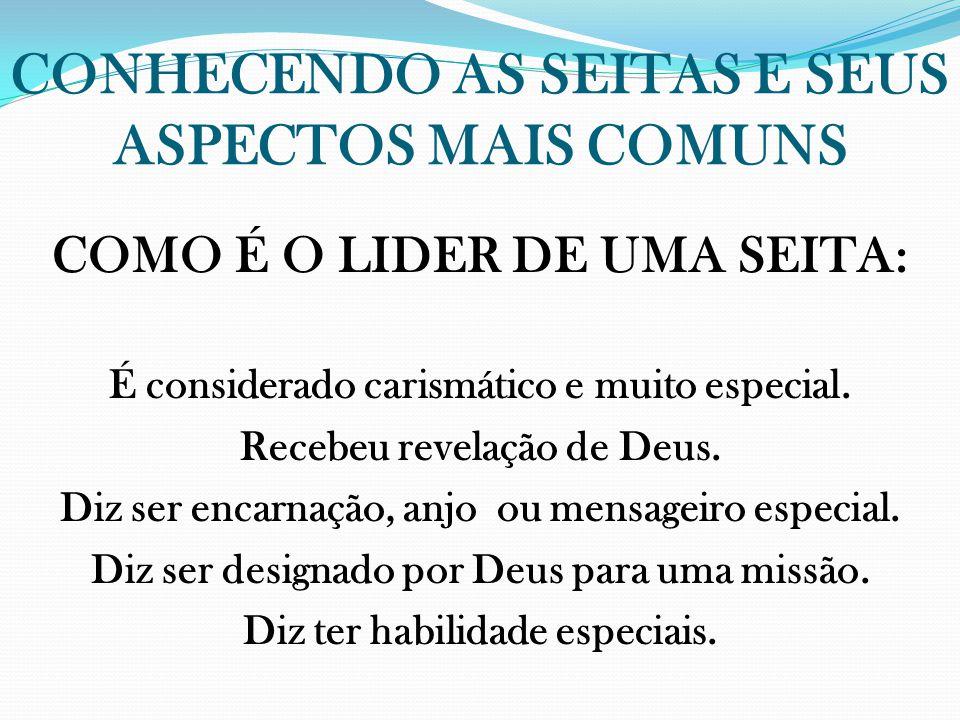 CONHECENDO AS SEITAS E SEUS ASPECTOS MAIS COMUNS