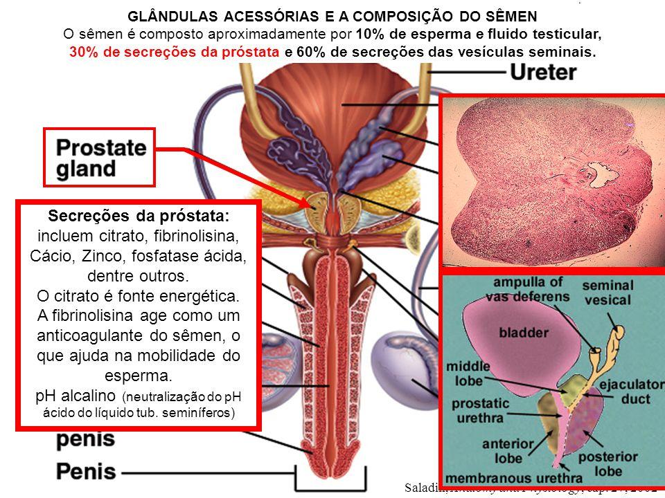 Secreções da próstata: