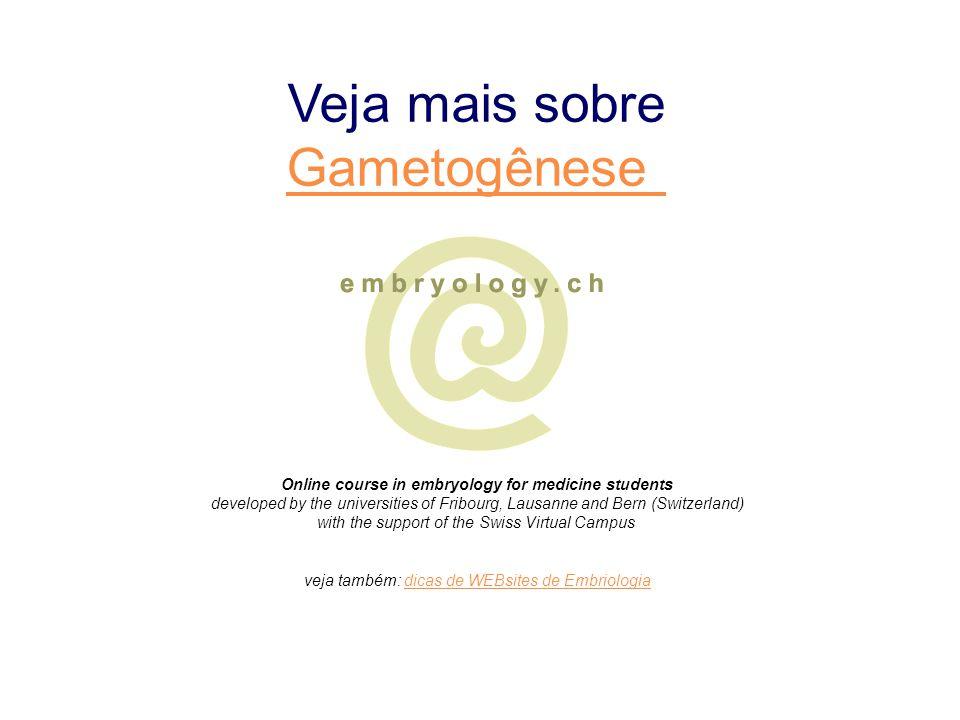 veja também: dicas de WEBsites de Embriologia