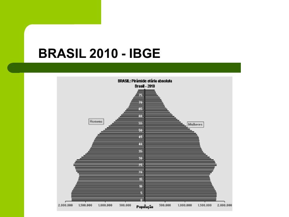 BRASIL 2010 - IBGE