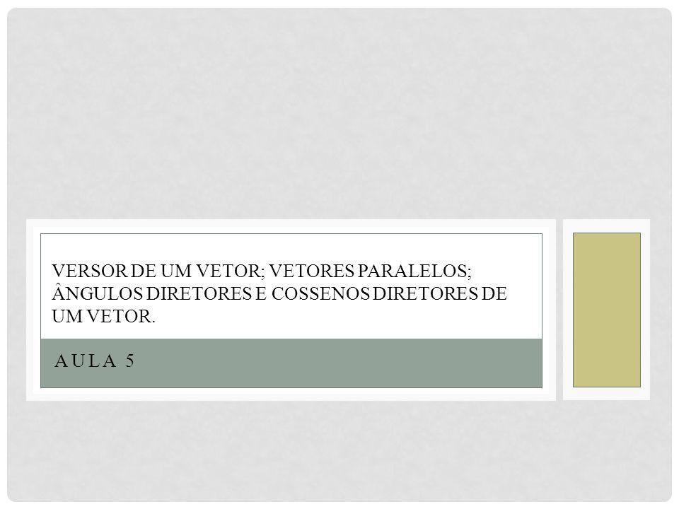 Versor de um vetor; Vetores paralelos; Ângulos diretores e cossenos diretores de um vetor.