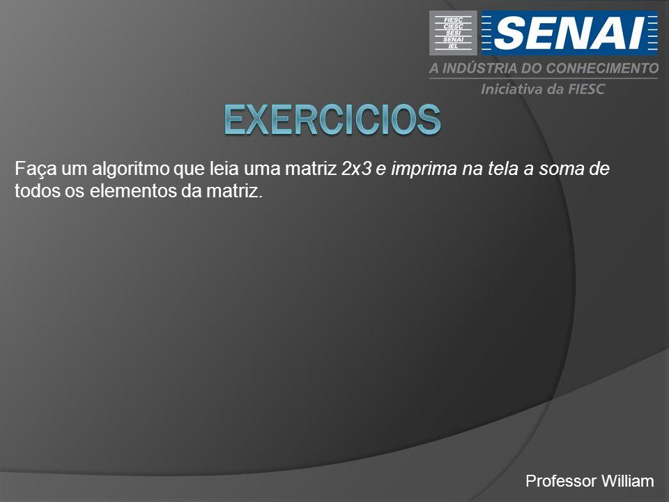 EXERCICIOS Faça um algoritmo que leia uma matriz 2x3 e imprima na tela a soma de todos os elementos da matriz.