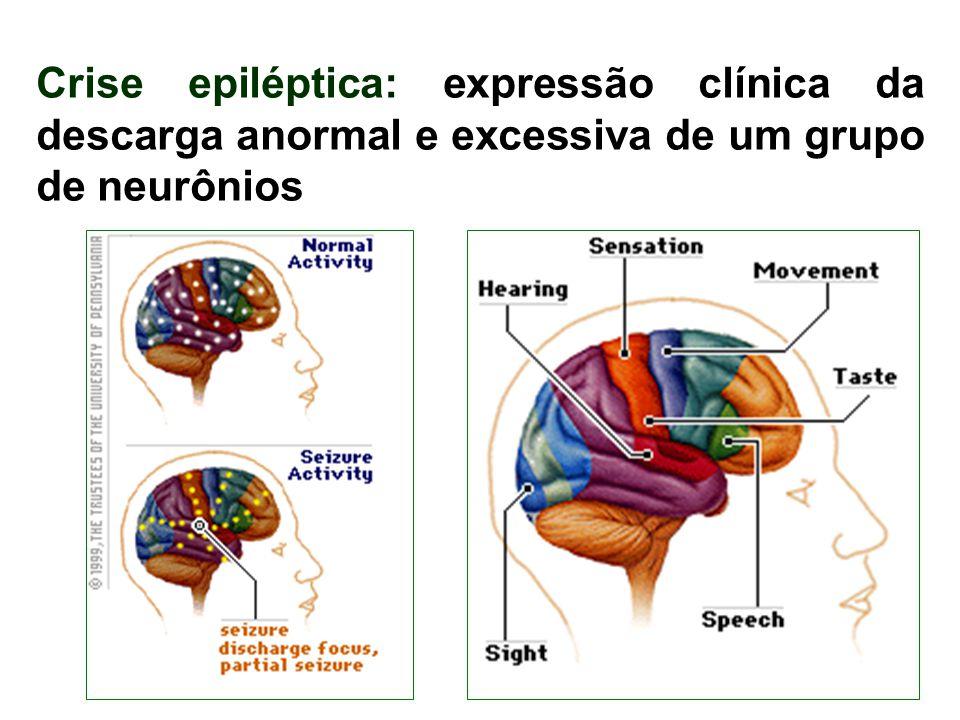 Crise epiléptica: expressão clínica da descarga anormal e excessiva de um grupo de neurônios