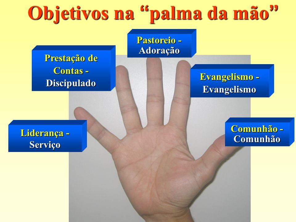 Objetivos na palma da mão