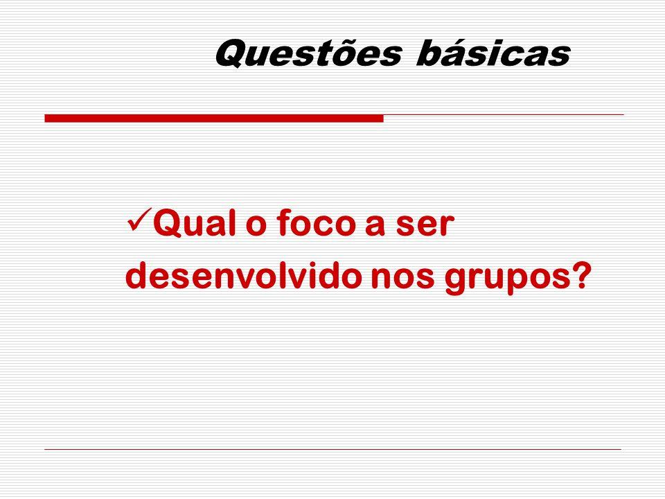 Questões básicas Qual o foco a ser desenvolvido nos grupos