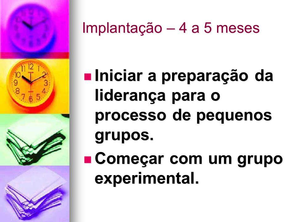 Iniciar a preparação da liderança para o processo de pequenos grupos.