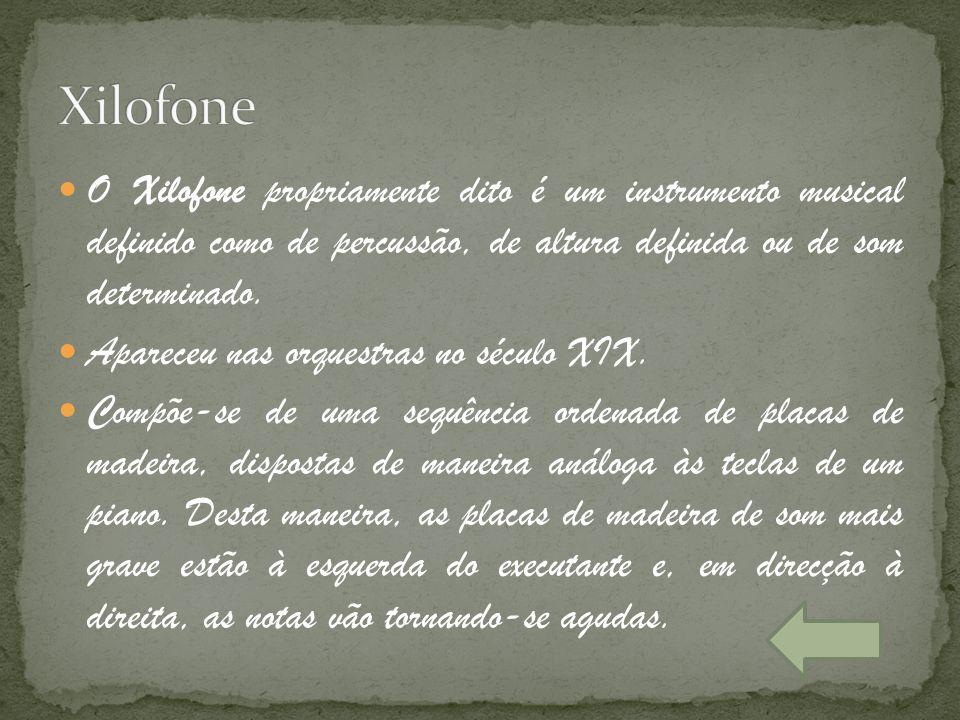 Xilofone O Xilofone propriamente dito é um instrumento musical definido como de percussão, de altura definida ou de som determinado.
