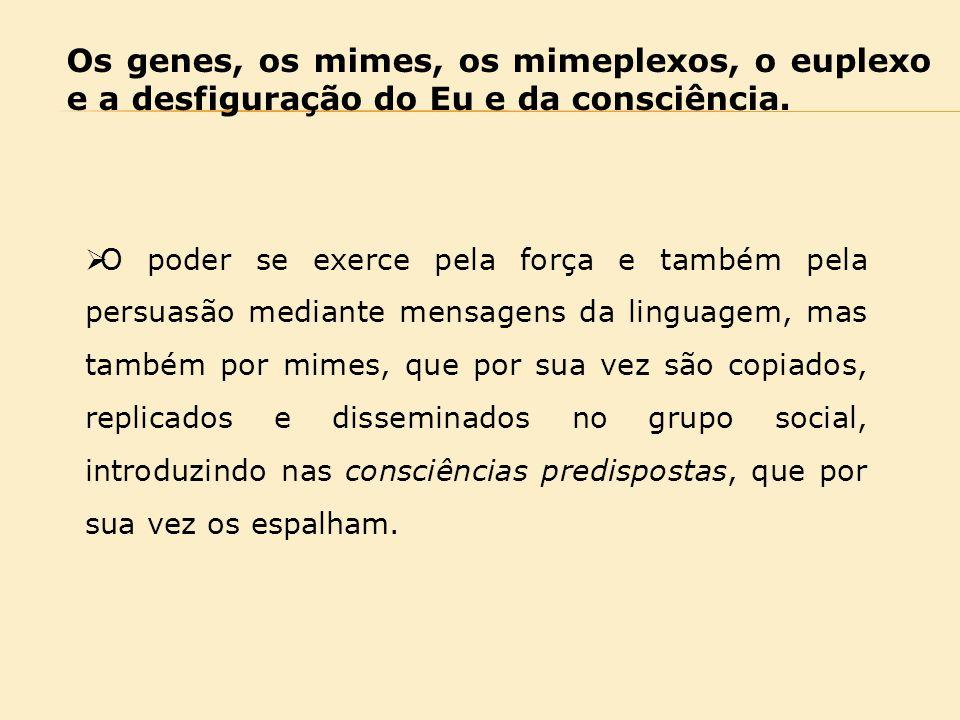 Os genes, os mimes, os mimeplexos, o euplexo e a desfiguração do Eu e da consciência.