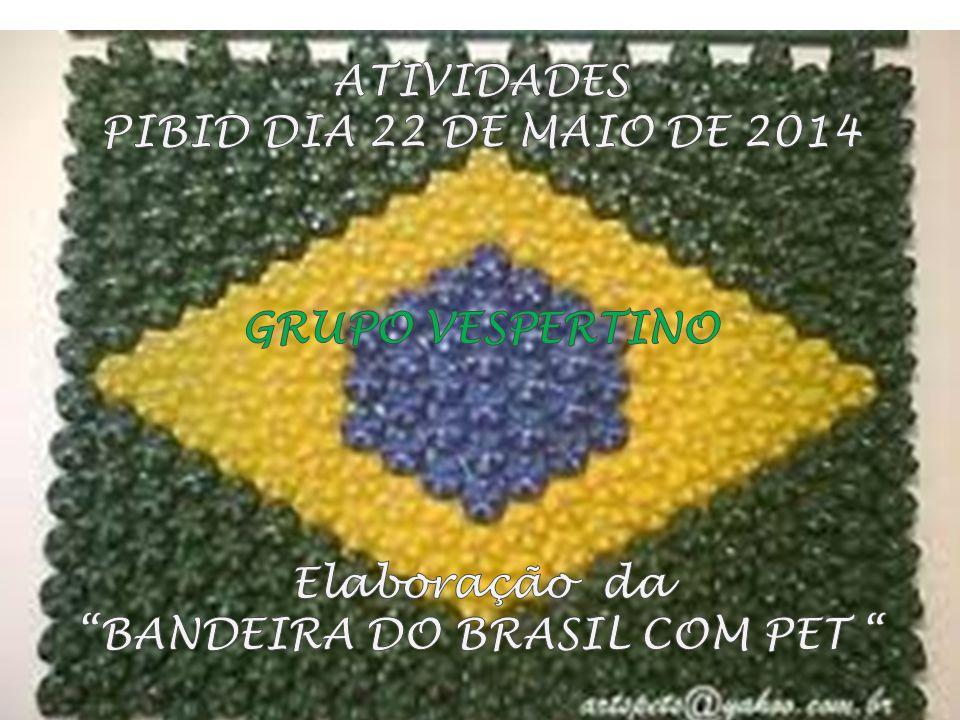 BANDEIRA DO BRASIL COM PET