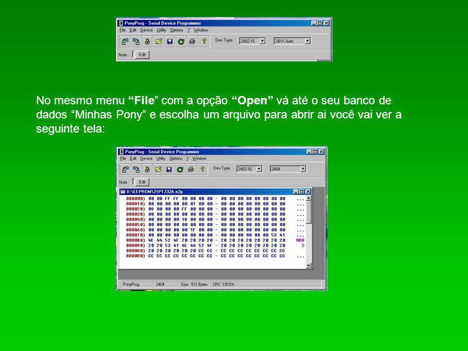 No mesmo menu File com a opção Open vá até o seu banco de dados Minhas Pony e escolha um arquivo para abrir ai você vai ver a seguinte tela: