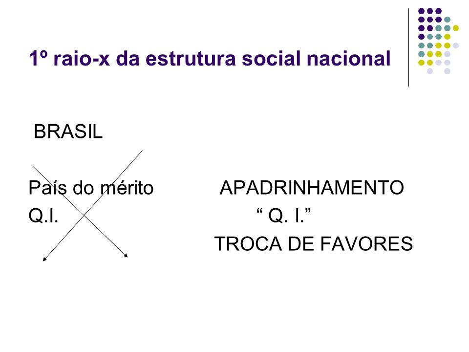 1º raio-x da estrutura social nacional