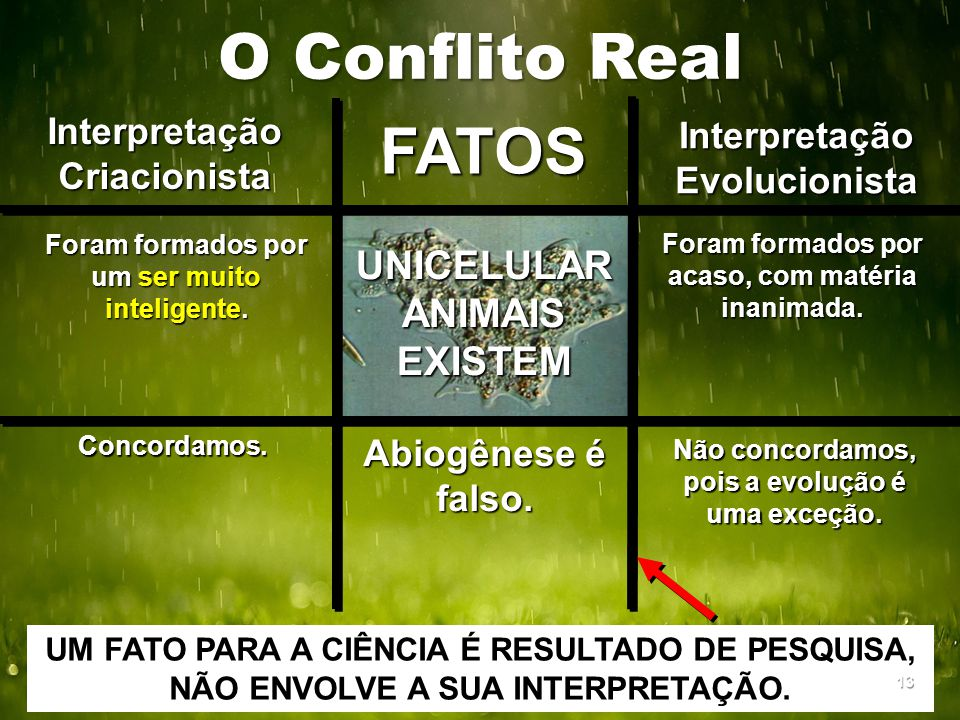 O Conflito Real FATOS UNICELULAR ANIMAIS EXISTEM