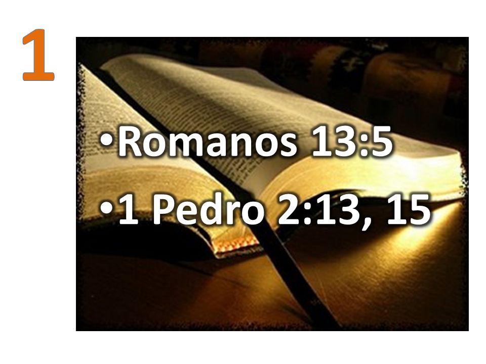 1 Romanos 13:5 1 Pedro 2:13, 15