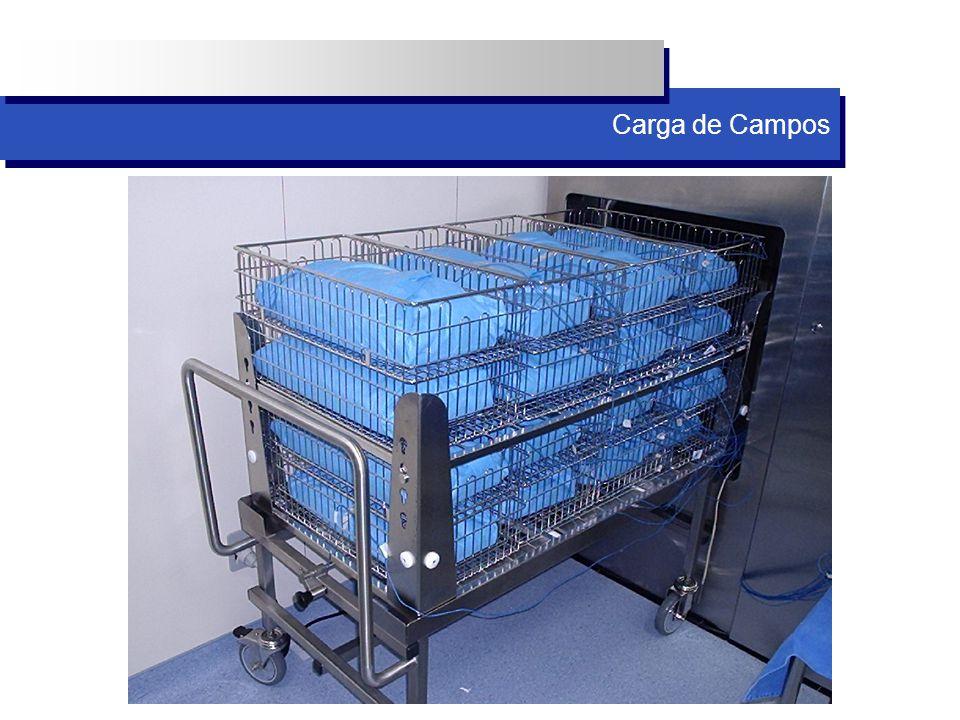 Carga de Campos