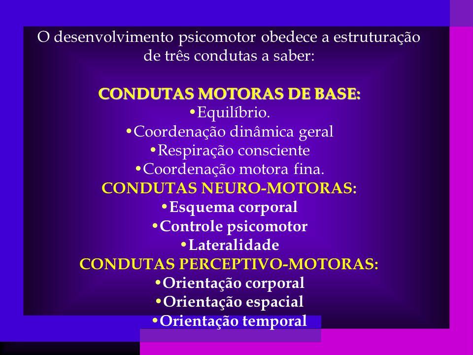 CONDUTAS MOTORAS DE BASE: Equilíbrio. Coordenação dinâmica geral