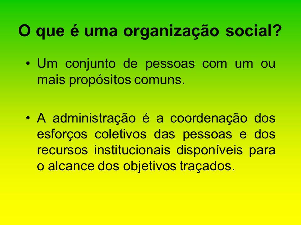 O que é uma organização social
