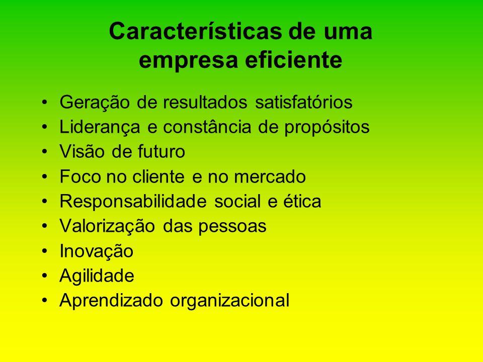 Características de uma empresa eficiente