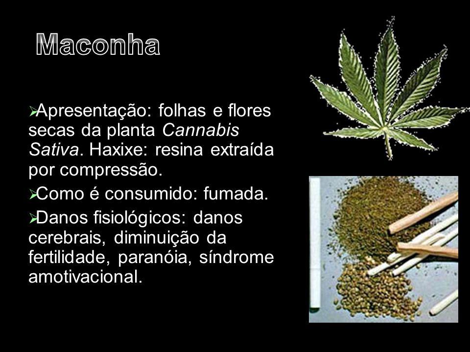 Maconha Apresentação: folhas e flores secas da planta Cannabis Sativa. Haxixe: resina extraída por compressão.