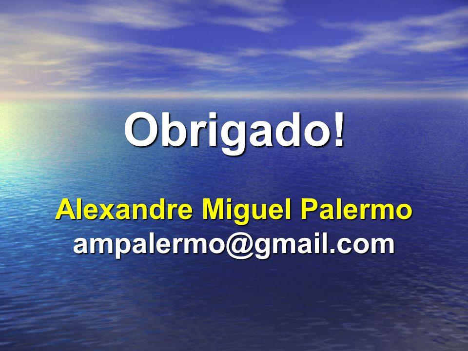 Alexandre Miguel Palermo