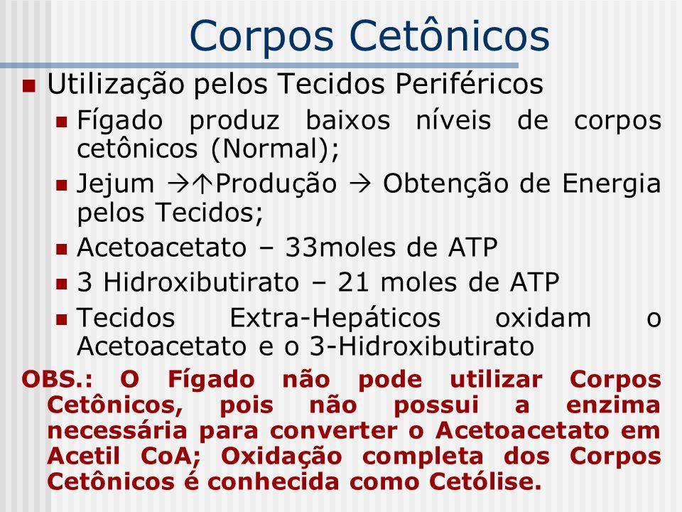 Corpos Cetônicos Utilização pelos Tecidos Periféricos