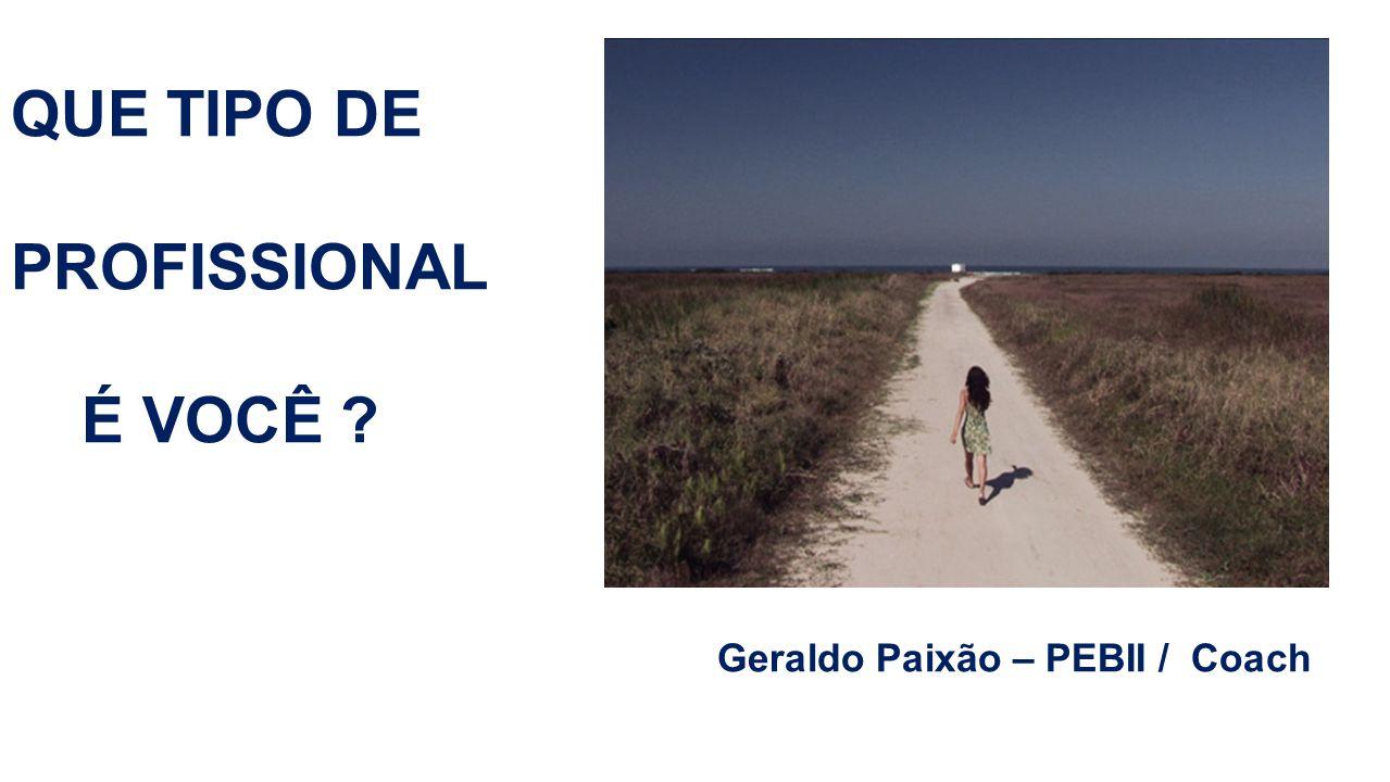 QUE TIPO DE PROFISSIONAL É VOCÊ Geraldo Paixão – PEBII / Coach