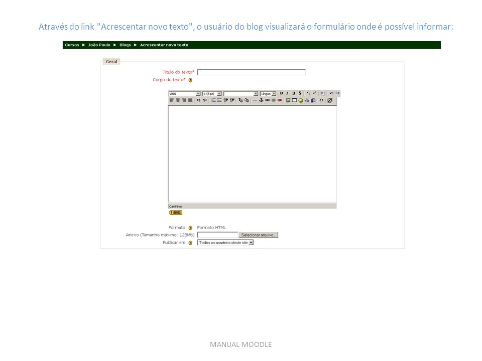 Através do link Acrescentar novo texto , o usuário do blog visualizará o formulário onde é possível informar: