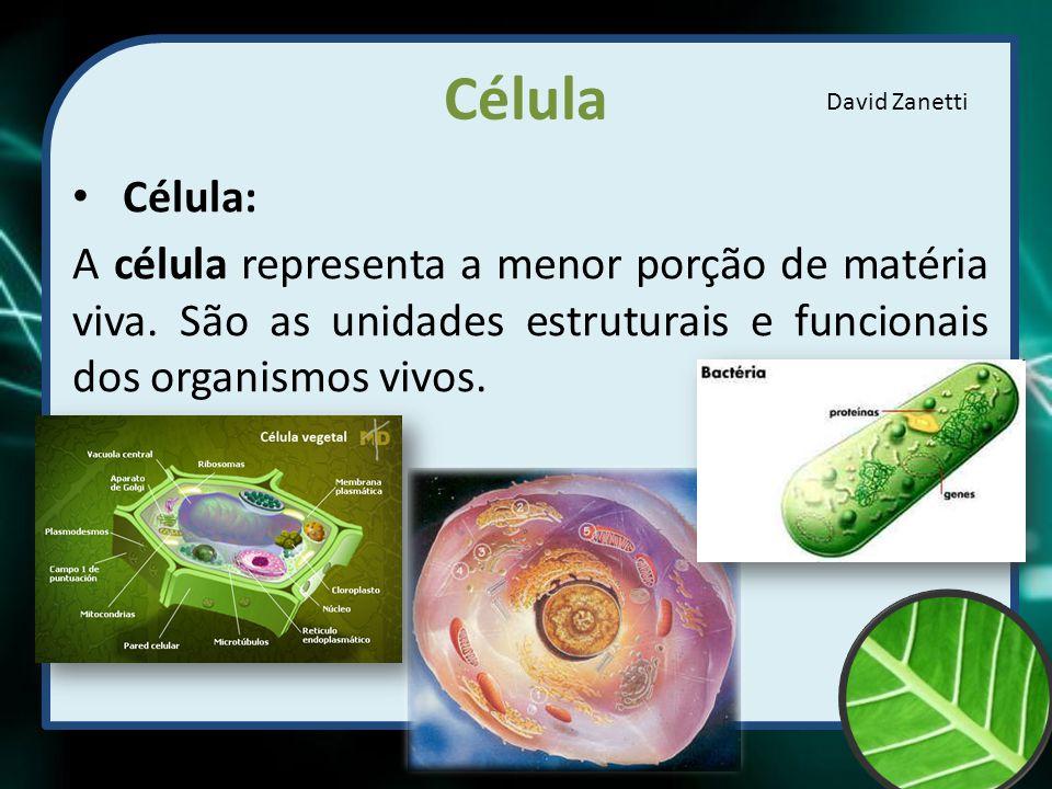 Célula David Zanetti. Célula: A célula representa a menor porção de matéria viva.