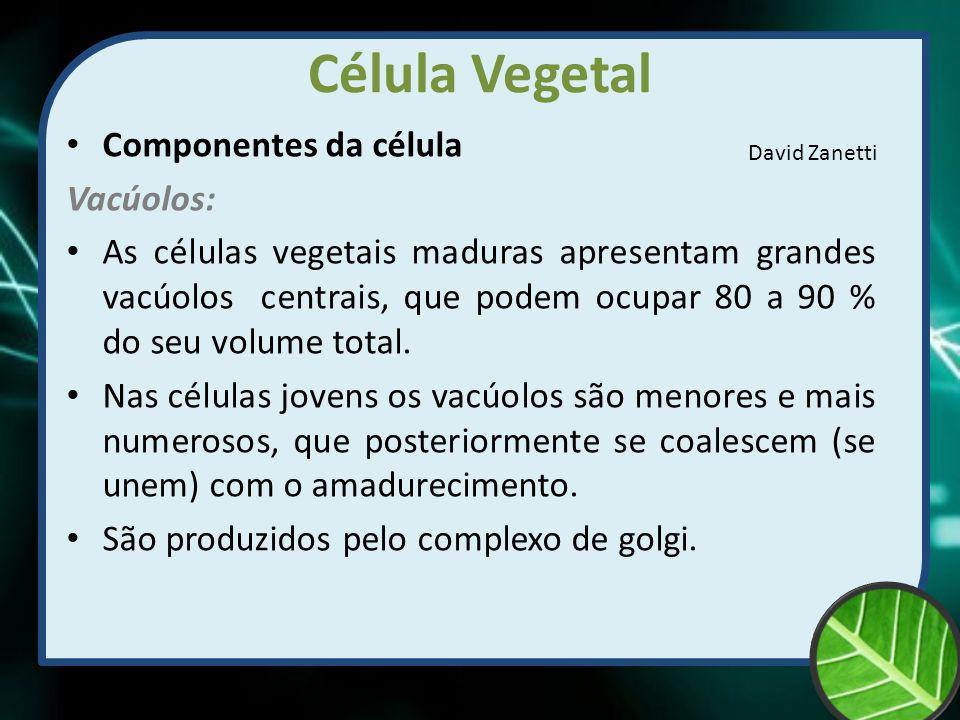 Célula Vegetal Componentes da célula Vacúolos: