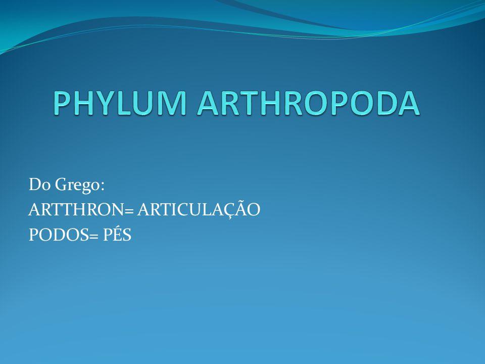 Do Grego: ARTTHRON= ARTICULAÇÃO PODOS= PÉS