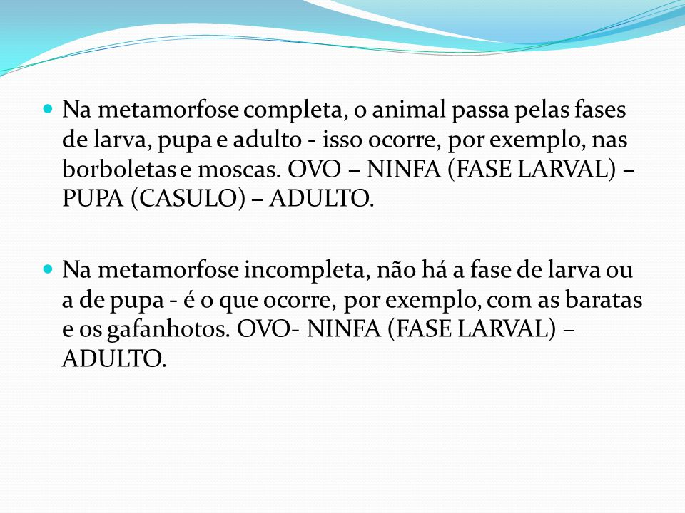 Na metamorfose completa, o animal passa pelas fases de larva, pupa e adulto - isso ocorre, por exemplo, nas borboletas e moscas. OVO – NINFA (FASE LARVAL) – PUPA (CASULO) – ADULTO.