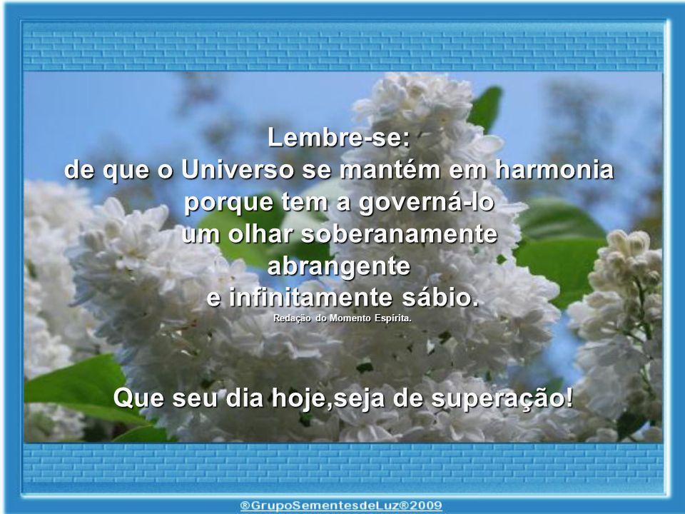 de que o Universo se mantém em harmonia porque tem a governá-lo