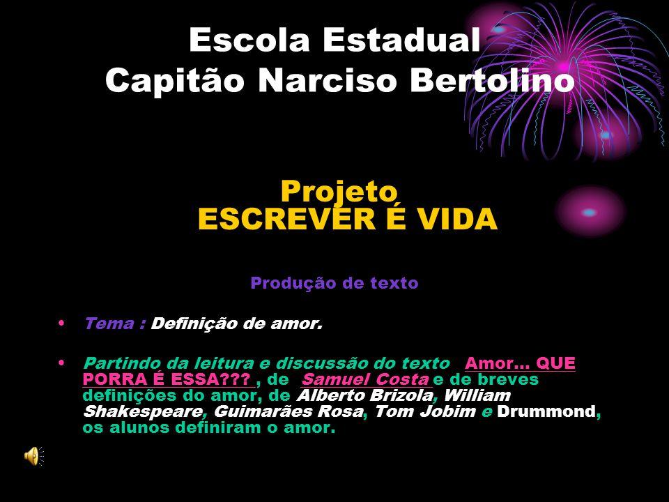 Escola Estadual Capitão Narciso Bertolino