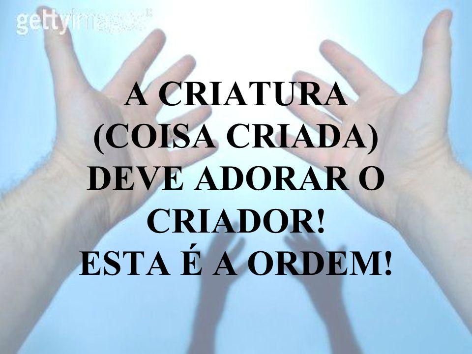 A CRIATURA (COISA CRIADA) DEVE ADORAR O CRIADOR! ESTA É A ORDEM!