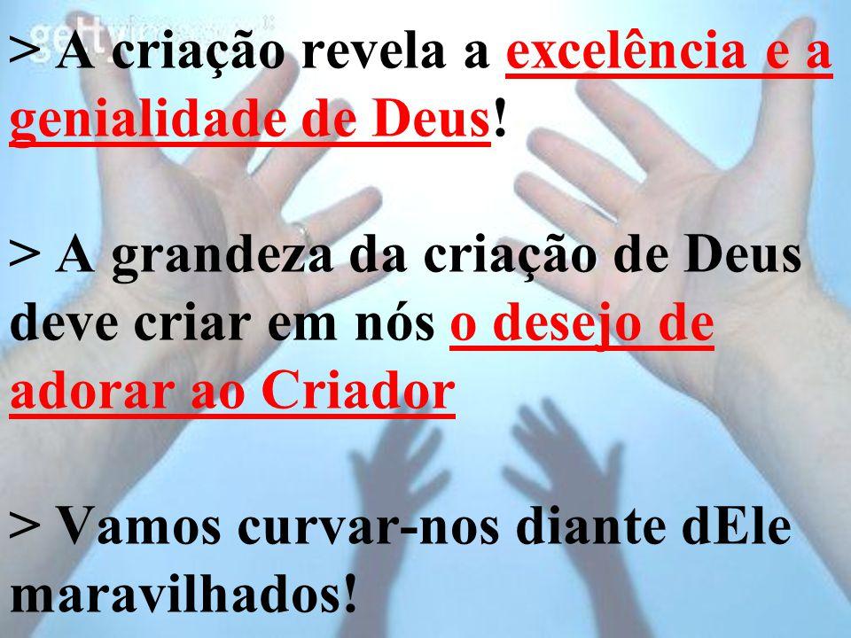 > A criação revela a excelência e a genialidade de Deus
