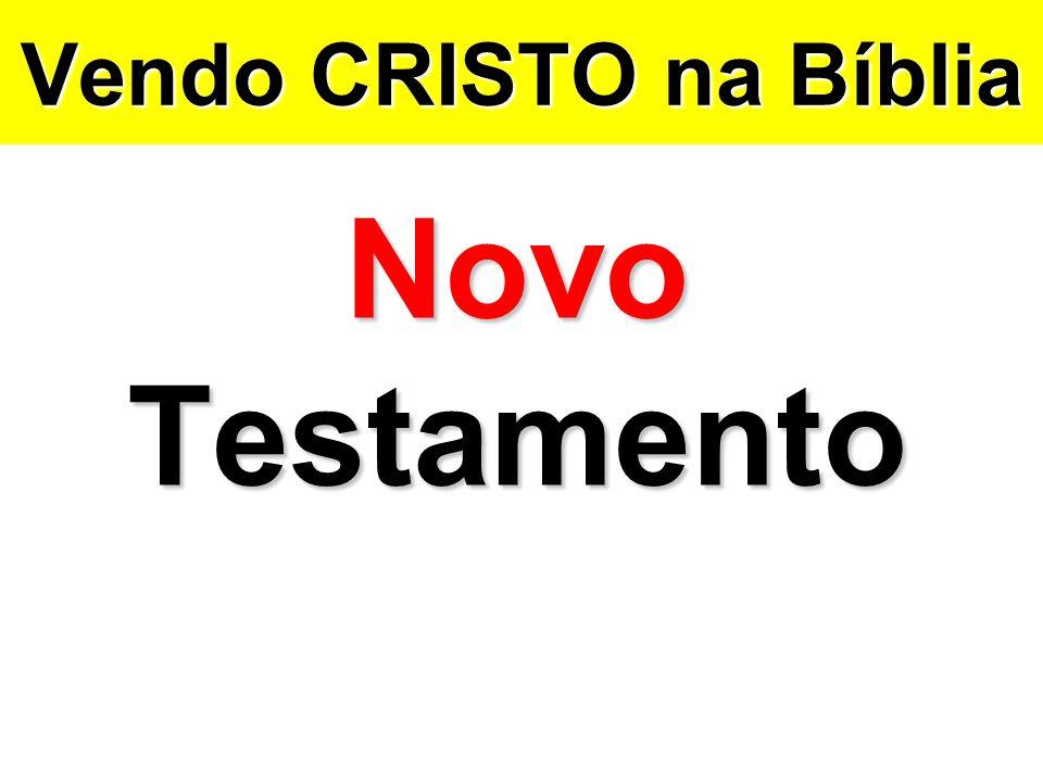Vendo CRISTO na Bíblia Novo Testamento