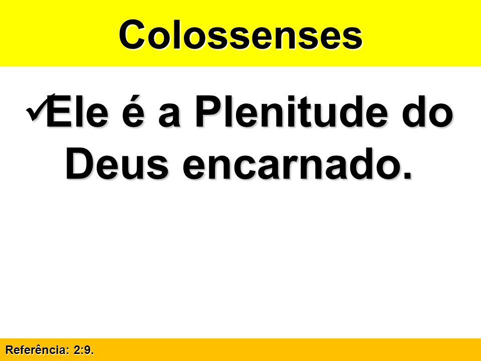 Ele é a Plenitude do Deus encarnado.