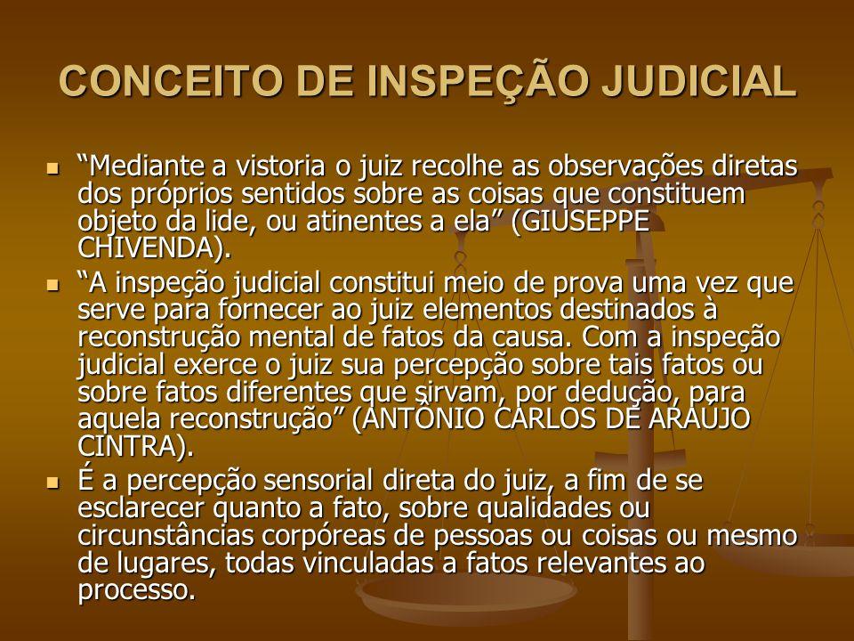 CONCEITO DE INSPEÇÃO JUDICIAL