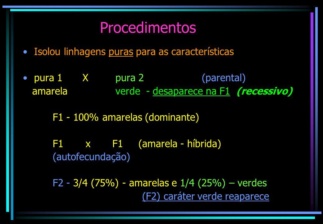 Procedimentos Isolou linhagens puras para as características