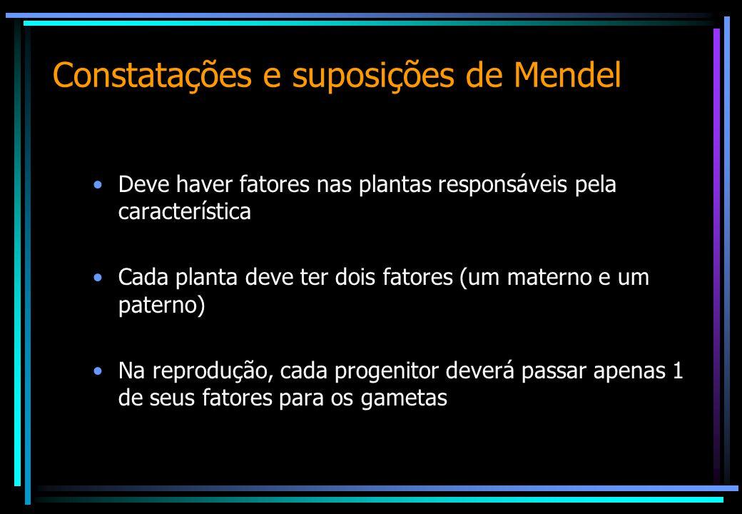 Constatações e suposições de Mendel
