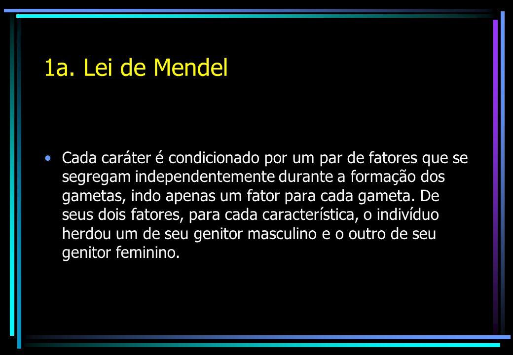 1a. Lei de Mendel